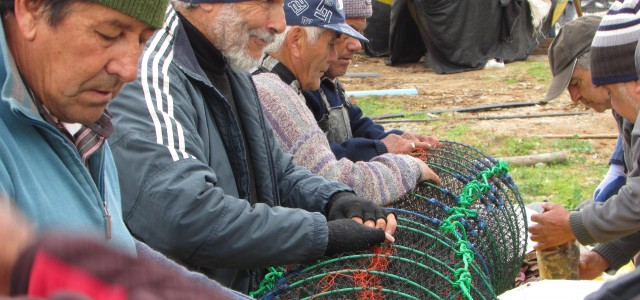 Nuevo reglamento de acuicultura en áreas de manejo: Acciones para trascender en su implementación